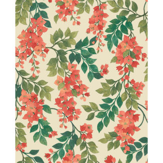 Cole and Son Seville Bougainvillea 117/6016 Wallpaper