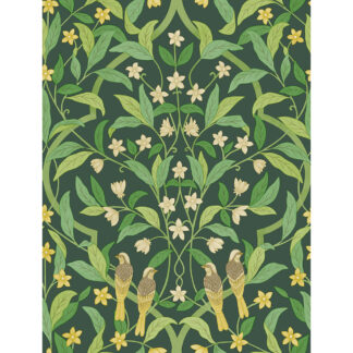 Cole and Son Seville Jasmine & Serin Symphony 117/10029 Wallpaper