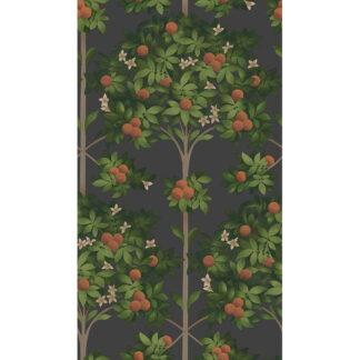 Cole and Son Seville Orange Blossom 117/1003 Wallpaper