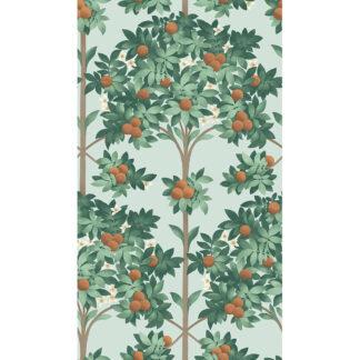 Cole and Son Seville Orange Blossom 117/1004 Wallpaper