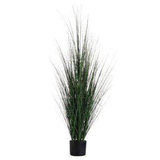 Potted Tall Grass Bush