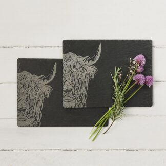 2 Highland Cow Place Mats