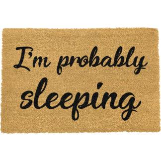 I'm Probably Sleeping Doormat